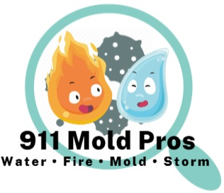 Recommendation for Brian Hatfield of 911 Mold Pros