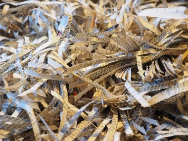 Paper Waste Stats to Make You Think Twice